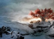 Game of Thrones: la serie tv anticiperà i libri