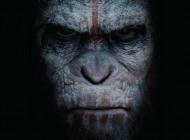 War of the Planet of the Apes: ecco il titolo del nuovo film sul Pianeta delle Scimmie
