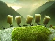 Minuscule - La valle delle formiche perdute, la novità in sala di questa settimana